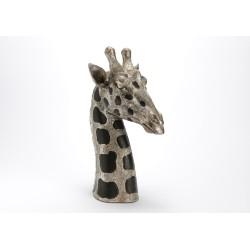 Tête de girafe à taches...